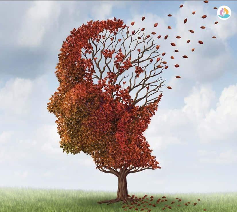 Питание для профилактики болезни Альцгеймера
